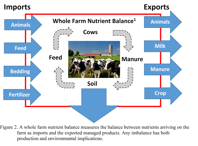 Nutrient Import and Export