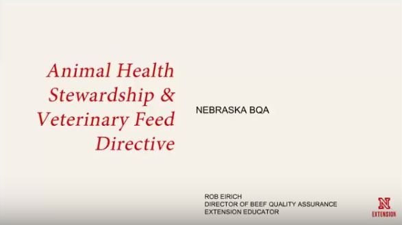 Vet Feed Directive webinar picture